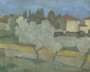 Olive Trees and Casa Padrone, Sansepolcro (blue sky)